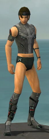 File:Assassin Canthan Armor M gray chest feet front.jpg