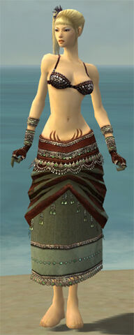 File:Ritualist Exotic Armor F gray arms legs front.jpg