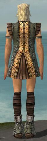 File:Elementalist Istani Armor M gray chest feet back.jpg