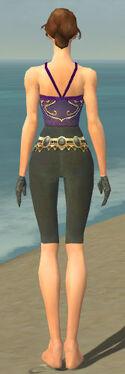 Mesmer Krytan Armor F gray arms legs back
