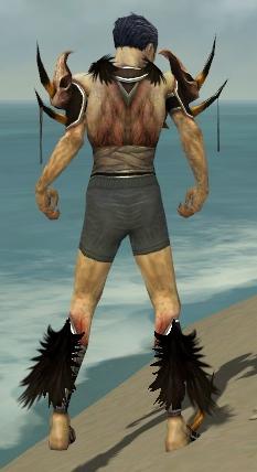 File:Necromancer Ancient Armor M gray chest feet back.jpg