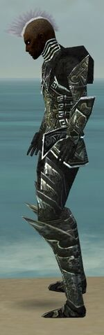 File:Necromancer Fanatic Armor M gray side.jpg
