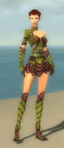 File:Ranger Elite Studded Leather Armor F dyed front.jpg