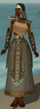 Dervish Asuran Armor F gray arms legs front