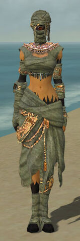 File:Ritualist Ancient Armor F gray front.jpg
