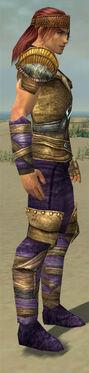 Ranger Tyrian Armor M dyed side