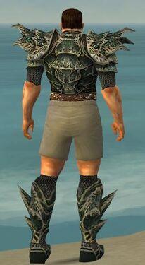 Warrior Elite Luxon Armor M gray chest feet back