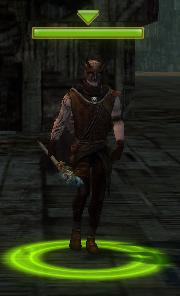 File:Am Fah Necromancer.jpg