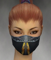 File:Assassin Exotic Armor F gray head front.jpg