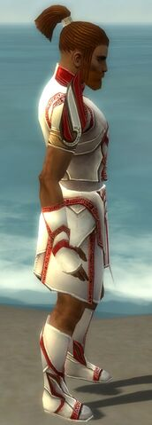 File:Paragon Asuran Armor M dyed side.jpg