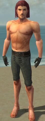 File:Mesmer Obsidian Armor M gray arms legs front.jpg