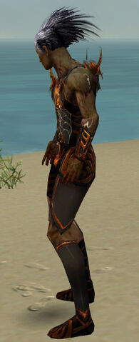 File:Necromancer Istani Armor M dyed side.jpg