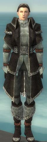 File:Elementalist Ancient Armor M gray front.jpg