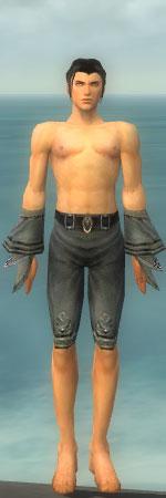 File:Elementalist Kurzick Armor M gray arms legs front.jpg