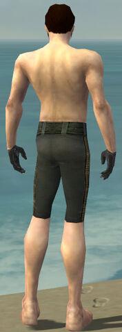 File:Mesmer Elite Noble Armor M gray arms legs back.jpg