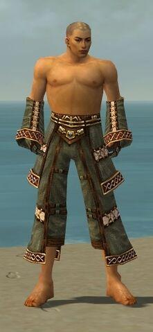 File:Monk Elite Kurzick Armor M gray arms legs front.jpg