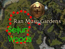 Seijun Woods map