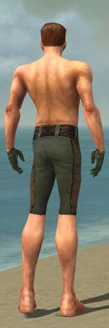File:Mesmer Enchanter Armor M gray arms legs back.jpg