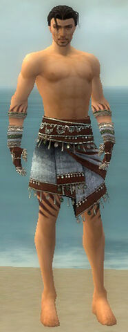 File:Ritualist Exotic Armor M gray arms legs front.jpg