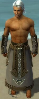 Dervish Asuran Armor M gray arms legs front