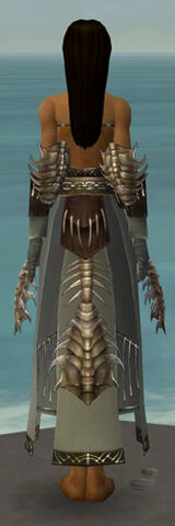 File:Dervish Primeval Armor F gray arms legs back.jpg