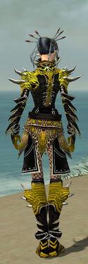 Necromancer Elite Luxon Armor F dyed back