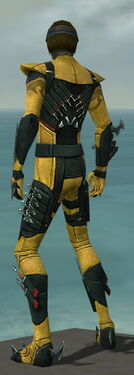 Assassin Seitung Armor M dyed back