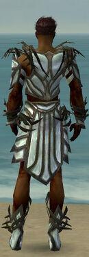 Paragon Primeval Armor M gray back
