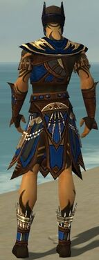 Ritualist Monument Armor M dyed back