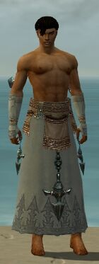 Dervish Vabbian Armor M gray arms legs front