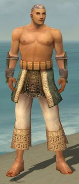 Monk Vabbian Armor M gray arms legs front