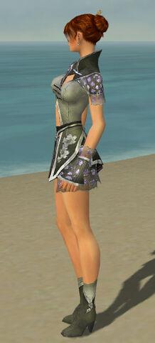 File:Elementalist Shing Jea Armor F gray side.jpg