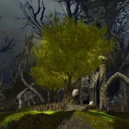 File:The Eternal Grove.jpg
