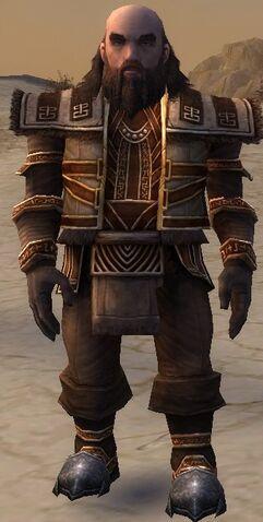 File:Ogden Stonehealer Armor Brotherhood Front.jpg