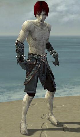 File:Necromancer Asuran Armor M gray arms legs front.jpg