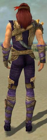 File:Ranger Tyrian Armor M dyed back.jpg