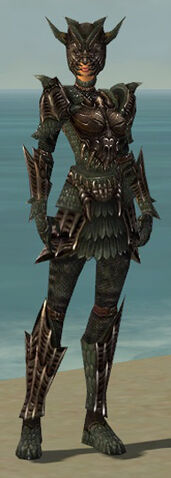 File:Warrior Elite Dragon Armor F gray front.jpg