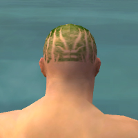 File:Monk Primeval Armor M dyed head back.jpg