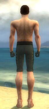 Mesmer Elite Enchanter Armor M gray arms legs back