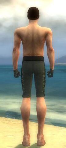 File:Mesmer Elite Enchanter Armor M gray arms legs back.jpg