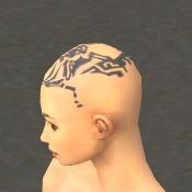 File:Monk Vabbian Armor F gray head side.jpg
