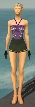 Mesmer Sunspear Armor F gray arms legs front