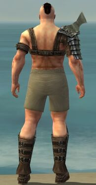 Warrior Elite Gladiator Armor M gray chest feet back