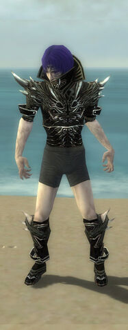 File:Necromancer Elite Luxon Armor M gray chest feet front.jpg