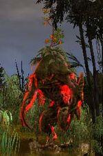 Seacrash, Elder Guardian
