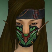 File:Assassin Elite Kurzick Armor F dyed head front.jpg