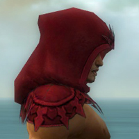 File:Dervish Elite Sunspear Armor M dyed head side.jpg