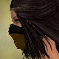 File:Ranger Norn Armor F dyed head side.jpg