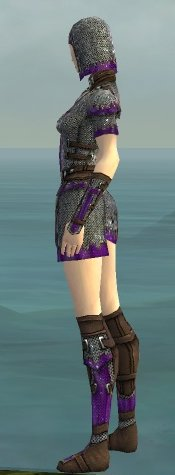 File:Warrior Tyrian Armor F dyed side.jpg