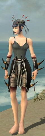File:Necromancer Ancient Armor F gray arms legs front.jpg